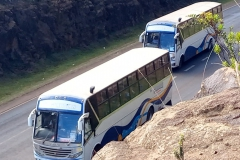 top-view-buses